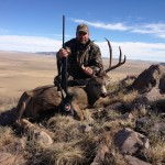 Warren's NM Mule Deer